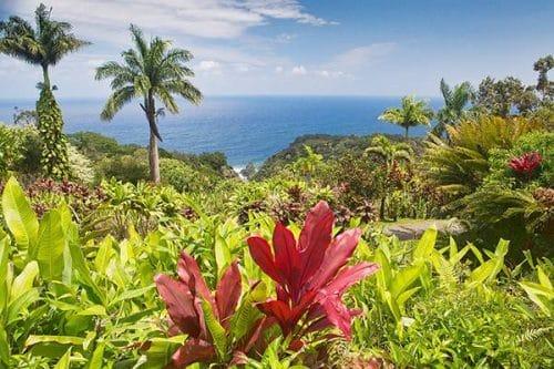 Hawaii Kreuzfahrten © Carnival Cruise Line