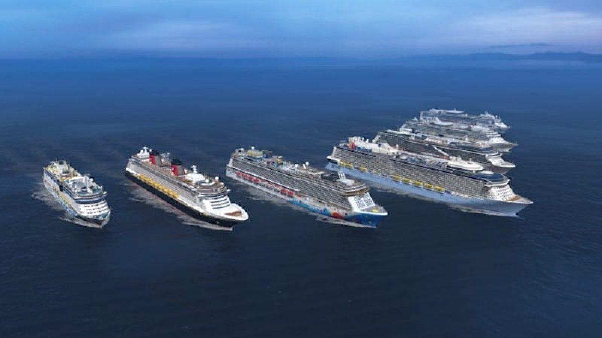All Kreuzfahrtschiffe der verschiedenen Reedereien - die Grafik zeigt Kreuzfahrtschiffe die auf der Meyer Werft in Papenburg gebaut wurden / © Meyer Werft